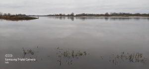 Blick auf das Wasser der Elbe